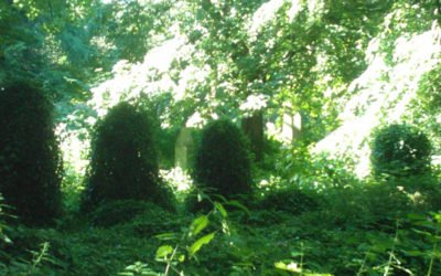 Warriston Cemetery – From Horror Movie Set to a Victorian Paradise for the Dead