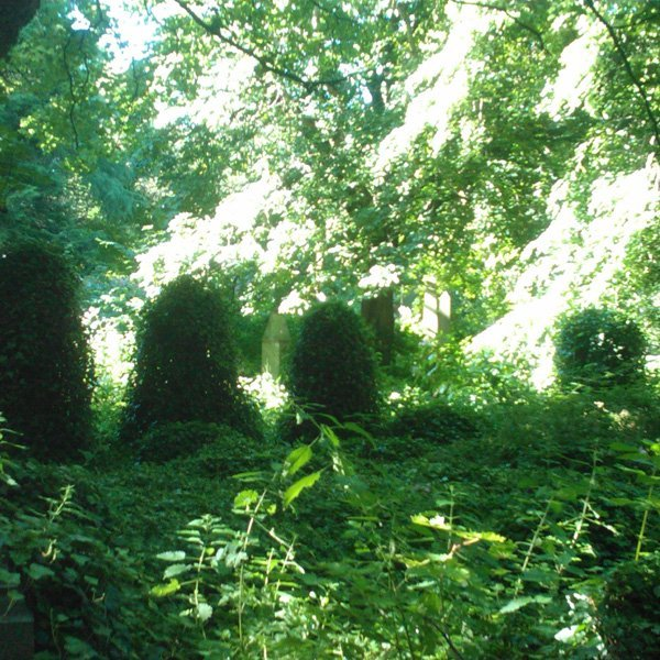 Warriston Cemetery - Horror Movie Set to a Victorian Paradise for the Dead